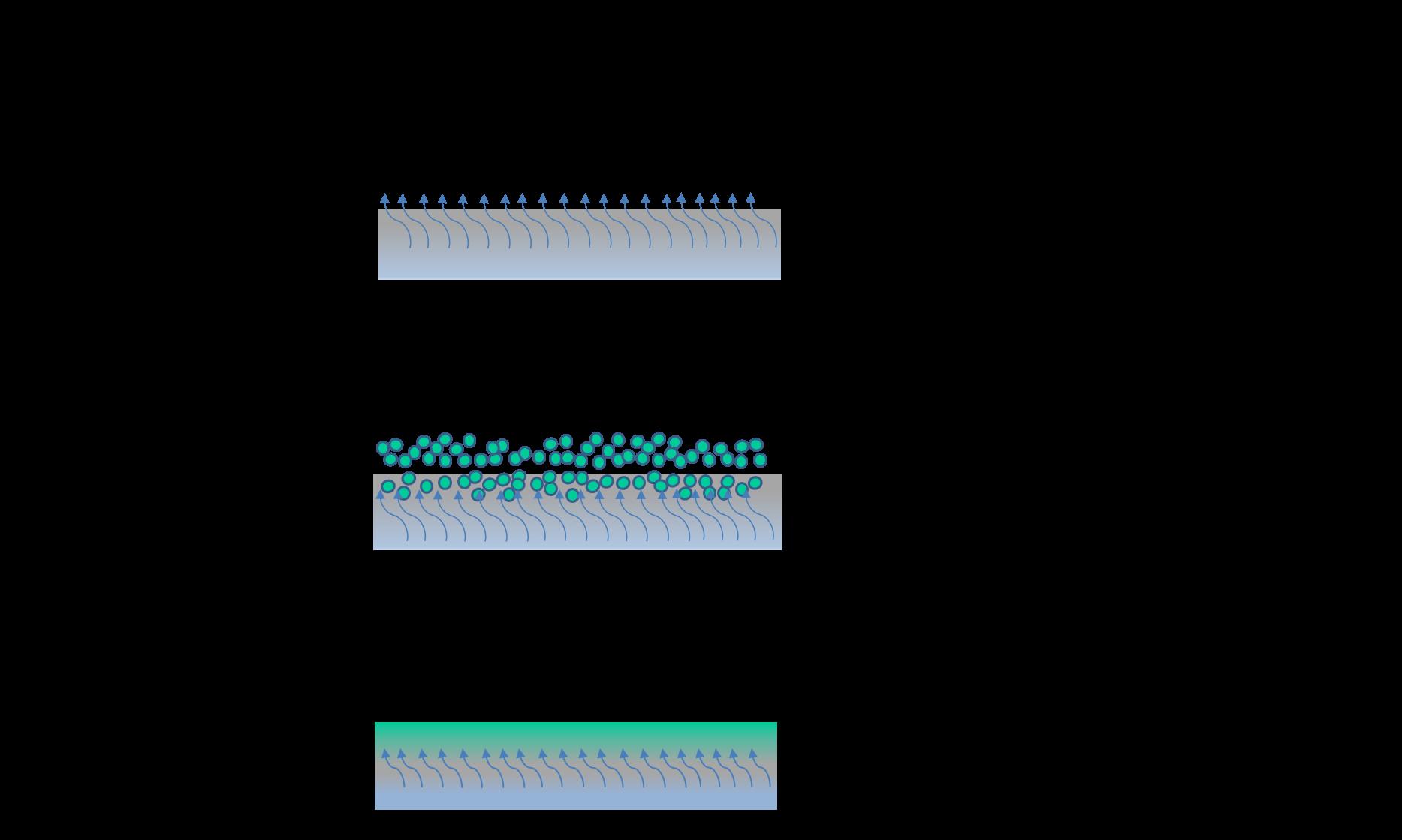 Como Funciona Cura do Concreto com ACRILCURA DRY